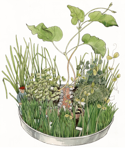 Linnea med planterad djungel_web